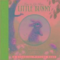 Cover-Bild zu Time to Go Home Little Bunny von Hawkins, Emily