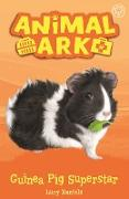 Cover-Bild zu Daniels, Lucy: Guinea Pig Superstar (eBook)
