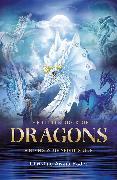 Cover-Bild zu Little Book of Dragons von Fader, Christine Arana (Christine Arana Fader)