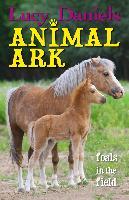 Cover-Bild zu Daniels, Lucy: Foals in the Field (eBook)