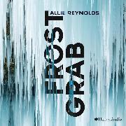 Cover-Bild zu Reynolds, Allie: Frostgrab (ungekürzt) (Audio Download)