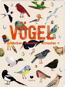 Cover-Bild zu roots (Überarb.): VÖGEL