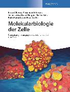Cover-Bild zu Walter, Peter: Molekularbiologie der Zelle (eBook)