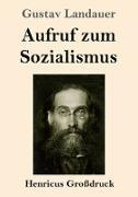 Cover-Bild zu Landauer, Gustav: Aufruf zum Sozialismus (Großdruck)