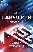 Cover-Bild zu Wekwerth, Rainer: Das Labyrinth (1). Das Labyrinth erwacht