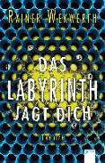 Cover-Bild zu Wekwerth, Rainer: Das Labyrinth jagt dich (2)