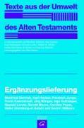 Cover-Bild zu Peust, Carsten: Ergänzungslieferung