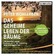 Cover-Bild zu Das geheime Leben der Bäume von Wohlleben, Peter