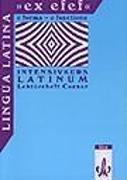 Cover-Bild zu Lingua Latina 'ex efef'. (e forma - e functione). Lektüreheft Caesar