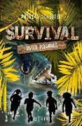 Cover-Bild zu Schlüter, Andreas: Survival - Unter Piranhas (eBook)
