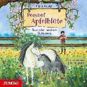 Cover-Bild zu Young, Pippa: Ponyhof Apfelblüte 7. Sternchen und ein Geheimnis (Audio Download)