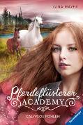 Cover-Bild zu Mayer, Gina: Pferdeflüsterer-Academy, Band 6: Calypsos Fohlen