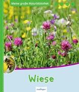 Cover-Bild zu Meine große Naturbibliothek: Wiese von Zysk, Stefanie