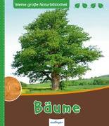 Cover-Bild zu Meine große Naturbibliothek: Bäume von Ernsten, Svenja