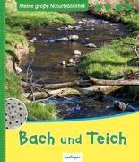 Cover-Bild zu Meine große Naturbibliothek: Bach und Teich von Zysk, Stefanie