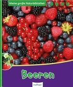 Cover-Bild zu Meine große Naturbibliothek: Beeren von Zysk, Stefanie