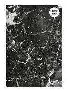 Cover-Bild zu Collegetimer Black Marble 2021/2022 - Schüler-Kalender A5 (15x21 cm) - Marmor - Day By Day - 352 Seiten - Terminplaner - Notizbuch - Alpha Edition