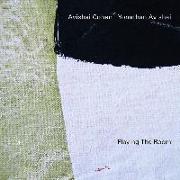 Cover-Bild zu Playing The Room von Cohen, Avishai (Solist)