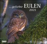 Cover-Bild zu geliebte Eulen 2021 - DUMONT Wandkalender - mit den wichtigsten Feiertagen - Format 38,0 x 35,5 cm von Dumont Kalenderverlag (Hrsg.)