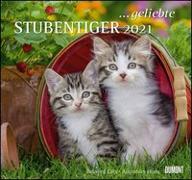 Cover-Bild zu geliebte Stubentiger 2021 - DUMONT Wandkalender - mit den wichtigsten Feiertagen - Format 38,0 x 35,5 cm von Dumont Kalenderverlag (Hrsg.)