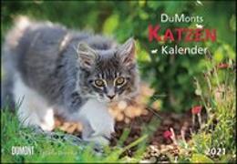 Cover-Bild zu DUMONTS Katzenkalender 2021 - Broschürenkalender - Wandkalender - mit Schulferienterminen - Format 42 x 29 cm von Jorjan, Jette (Beitr.)
