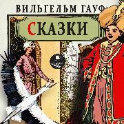 Cover-Bild zu Hauff, Wilhelm: Skazki (Audio Download)