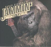 Cover-Bild zu Monkey Playhouse