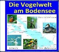 Cover-Bild zu Die Vogelwelt am Bodensee von Dingler, Karl-Heinz