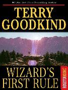 Cover-Bild zu Goodkind, Terry: Wizard's First Rule (eBook)
