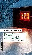 Cover-Bild zu Schmöe, Friederike: Drauß' vom Walde (eBook)