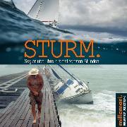 Cover-Bild zu eBook Sturm