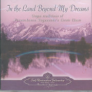 Cover-Bild zu In the Land Beyond my Dreams