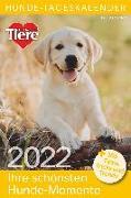 Cover-Bild zu Hunde-Tageskalender 2022
