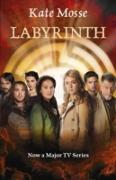 Cover-Bild zu Mosse, Kate: Labyrinth (eBook)