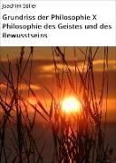 Cover-Bild zu Grundriss der Philosophie X Philosophie des Geistes und des Bewusstseins (eBook) von Stiller, Joachim
