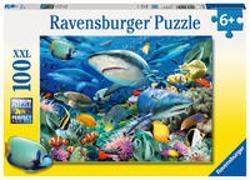 Cover-Bild zu Riff der Haie