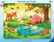 Cover-Bild zu Kleine Tierfreunde