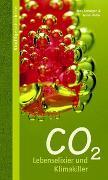 Cover-Bild zu CO2 von Soentgen, Jens (Hrsg.)