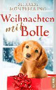 Cover-Bild zu Müntefering, Mirjam: Weihnachten mit Bolle (eBook)