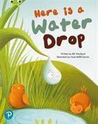 Cover-Bild zu Bug Club Shared Reading: Here is a Water Drop (Year 2) von Woollard, Elli