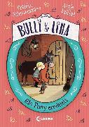Cover-Bild zu Szillat, Antje: Bulli & Lina - Ein Pony ermittelt (eBook)