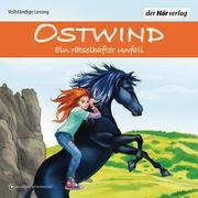 Cover-Bild zu Ostwind - Ein rätselhafter Unfall von Schwarz, Rosa