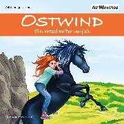 Cover-Bild zu Ostwind - Ein rätselhafter Unfall (Audio Download) von Schwarz, Rosa