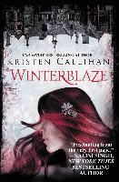 Cover-Bild zu Winterblaze (eBook) von Callihan, Kristen