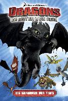 Cover-Bild zu Bratenstein, Jan (Übers.): Dragons - die Reiter von Berk 2. Die Gefahren der Tiefe