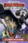 Cover-Bild zu Bratenstein, Jan (Übers.): Dragons - die Reiter von Berk 05