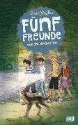 Cover-Bild zu Blyton, Enid: Fünf Freunde und das Burgverlies