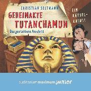 Cover-Bild zu Geheimakte Tutanchamun - Das gestohlene Amulett. Ein Rätselkrimi (Audio Download) von Seltmann, Christian