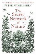 Cover-Bild zu The Secret Network of Nature von Wohlleben, Peter
