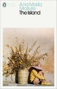 Cover-Bild zu The Island (eBook) von Matute, Ana María